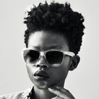 Curly High Top Fade Hairstyle